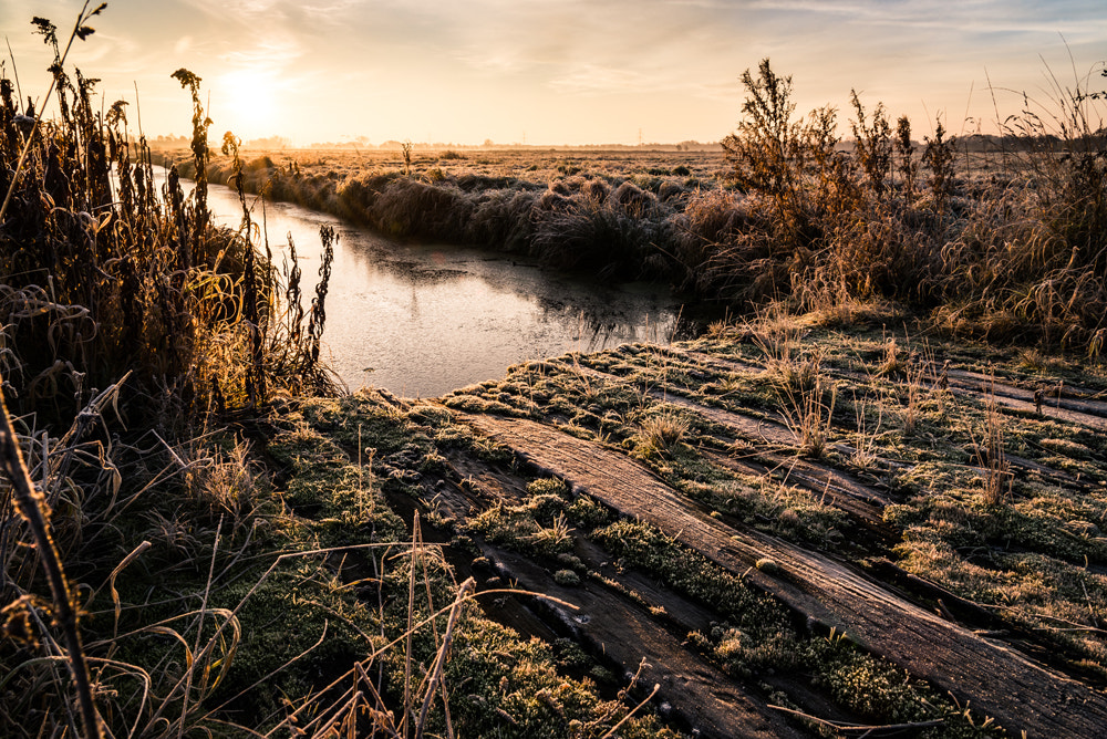 Photograph Cold Morning by Deejay Erosol on 500px