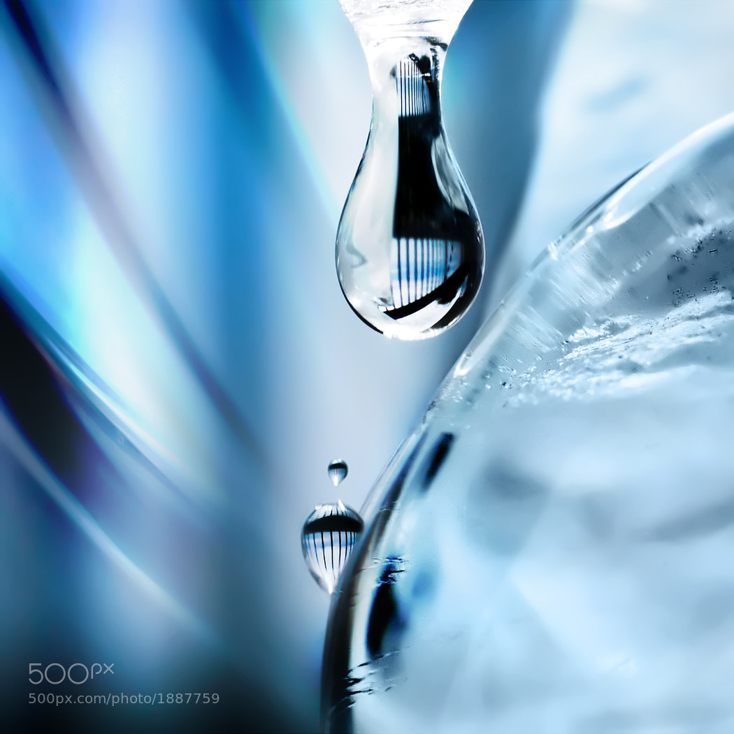Photograph I'm melting  by Marianna Armata on 500px