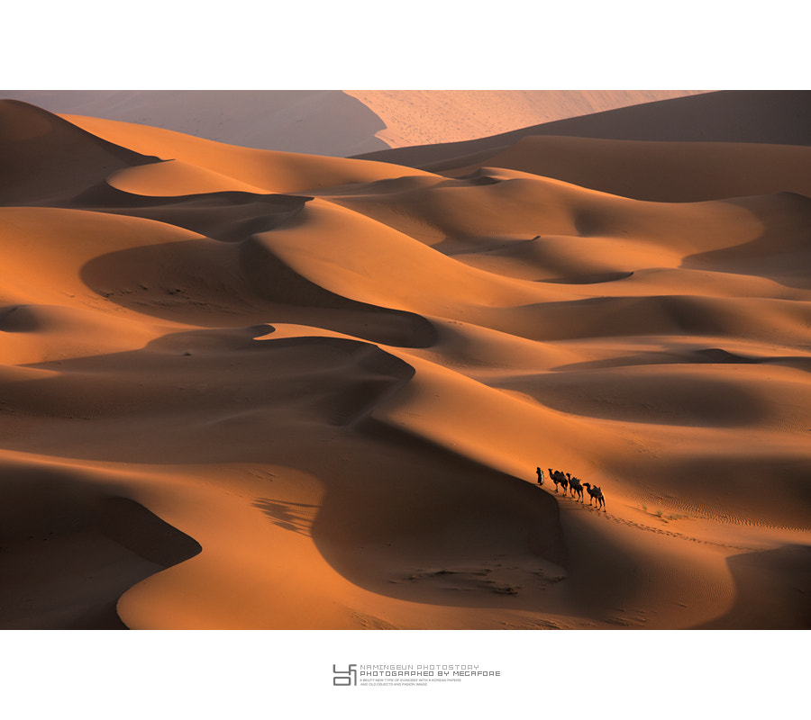 Photograph Light and Shadow by ingeun Nam on 500px