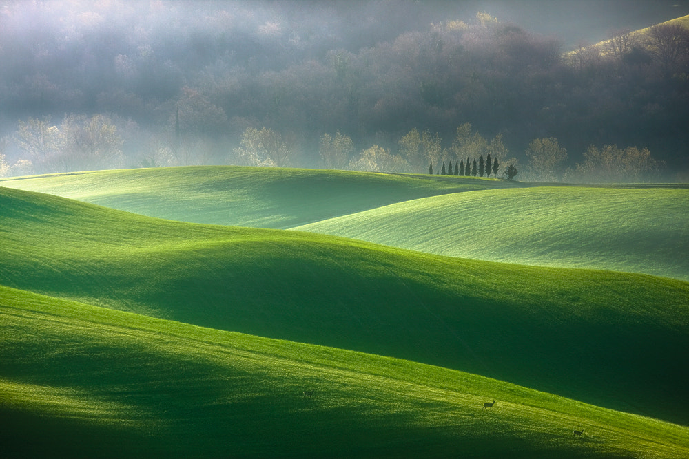 Photograph In the morning by Boguslaw Strempel on 500px