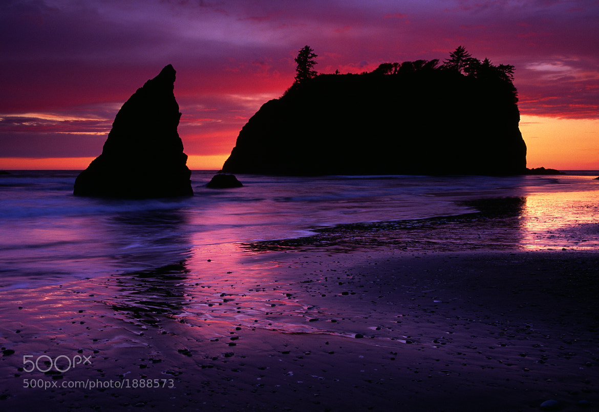 Photograph Pink at Ruby Beach by Steve Shuey on 500px