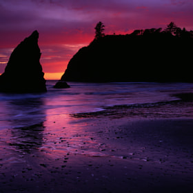 Pink at Ruby Beach by Steve Shuey (SteveShuey)) on 500px.com
