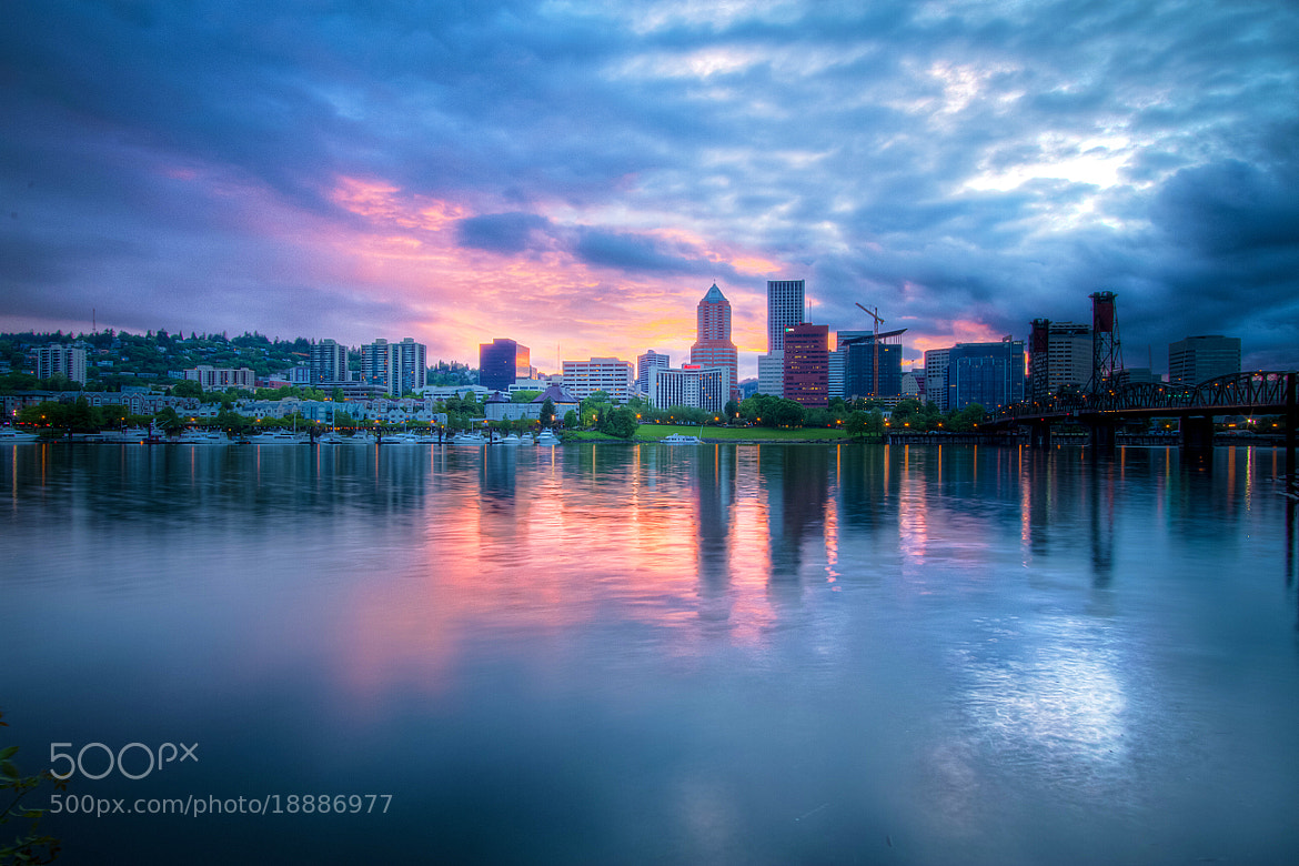 Photograph Pink & Purple Reflections by Adrian Blair on 500px