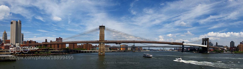 Photograph The Brooklyn Bridge by Jasmine Maisonet on 500px
