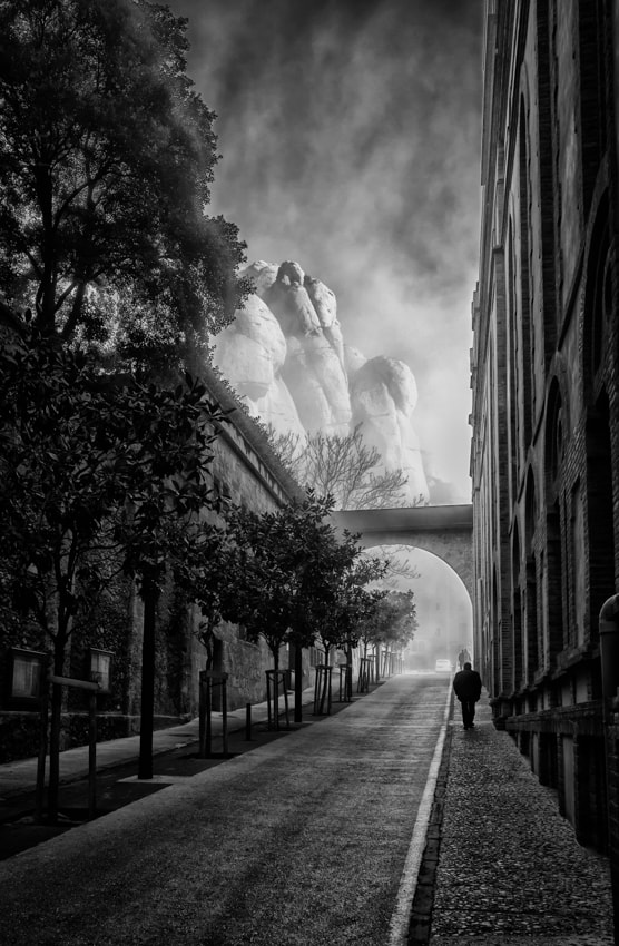 Photograph Morning walk by Ido Meirovich on 500px