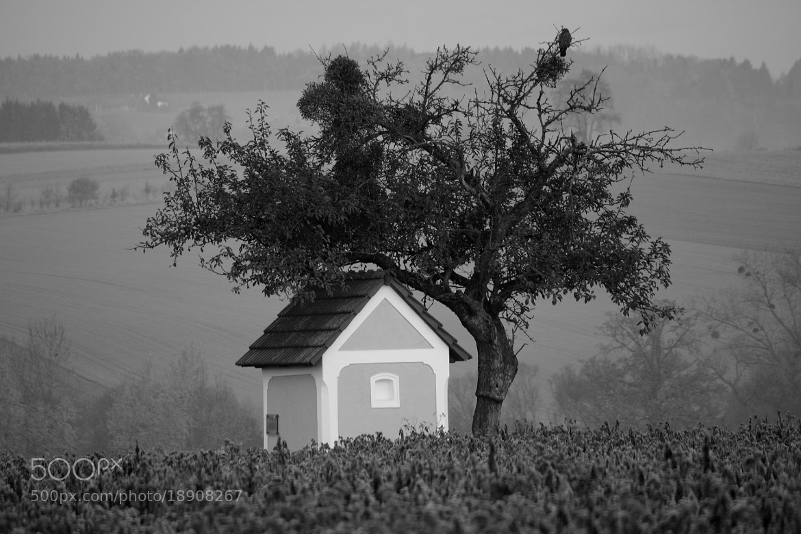 Photograph Little Chapel by Michael Gollmann on 500px