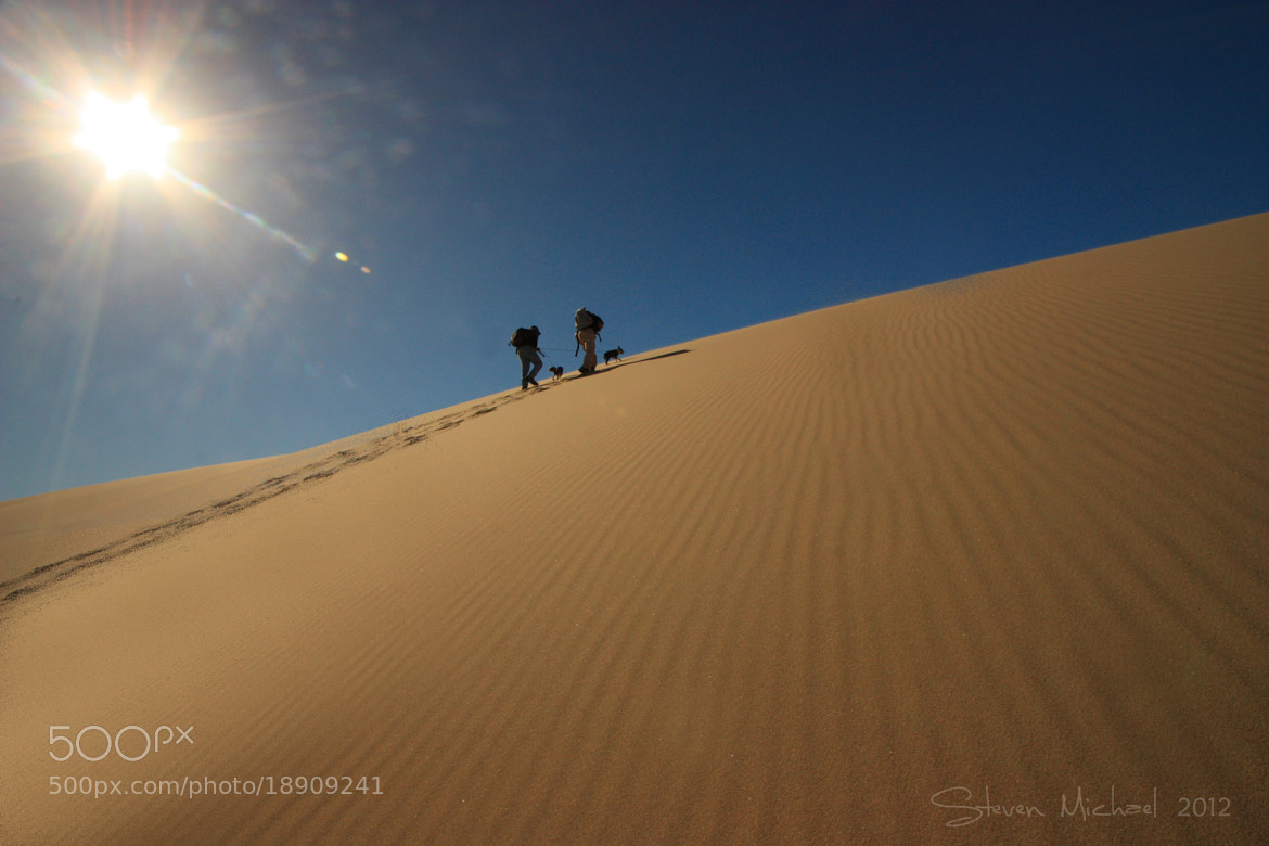 Photograph High Noon on the Dune by Steven  Michael on 500px