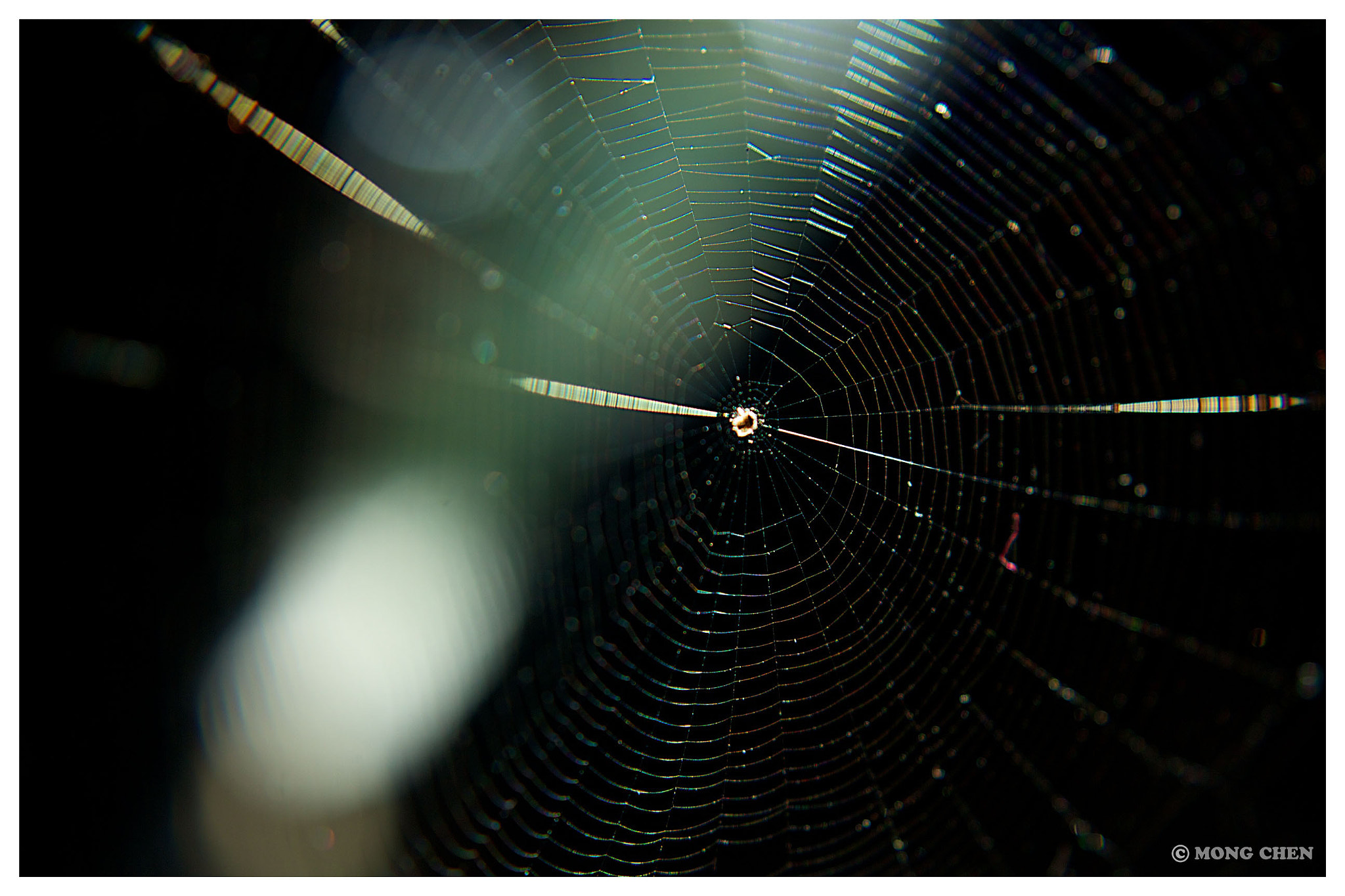 Photograph House of Spider by Mong Chen on 500px