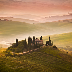 Early morning in Tuscany countryside.