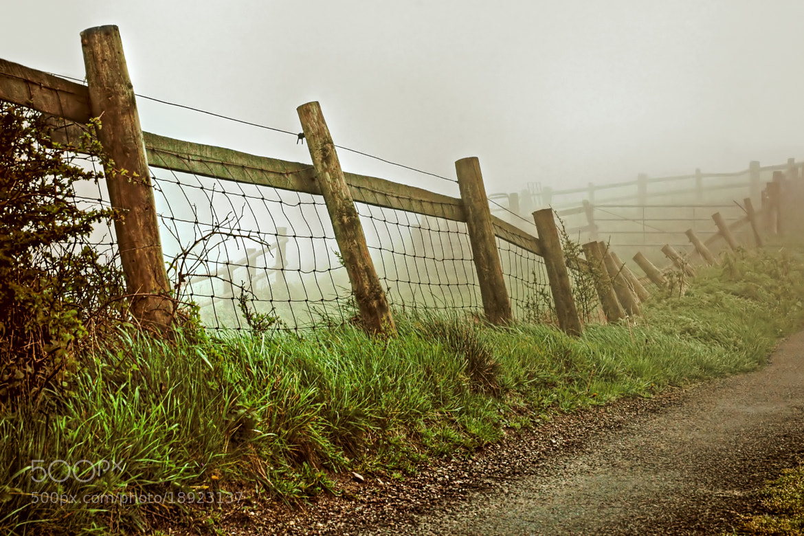Photograph Fence in the mist by Chris Spracklen on 500px