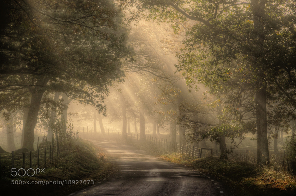Photograph This is Paradise... by Almqvist Photo on 500px
