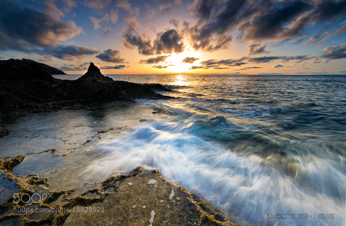Photograph Untitled by Duarte Sol on 500px