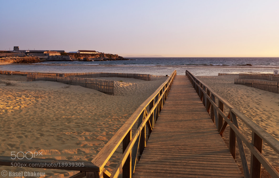 Photograph The walk to the Ocean  by Basel Chakour on 500px