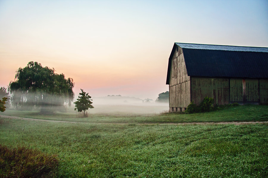 Rural Wonderland