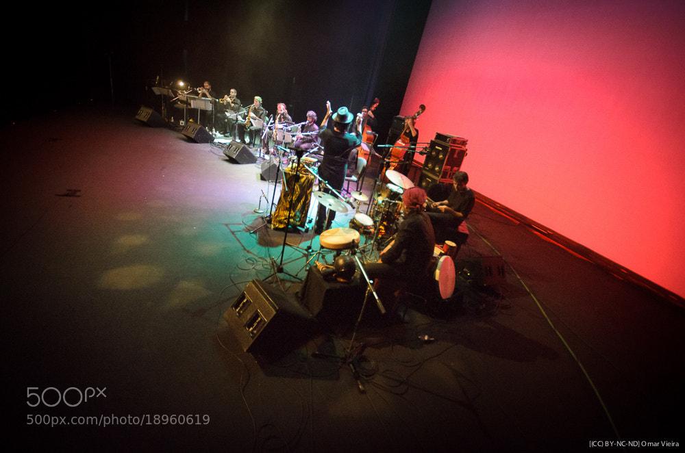 Photograph Free Art Ensemble by Omar Vieira on 500px