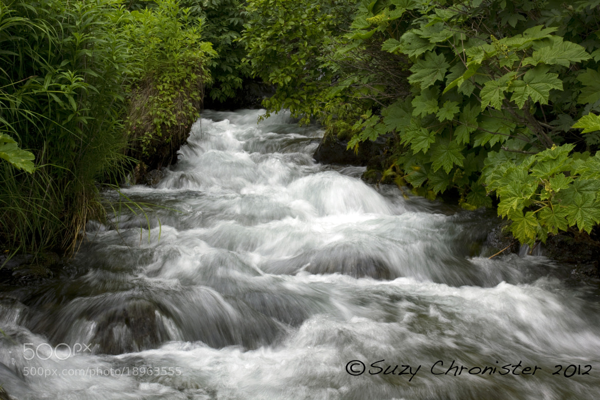 Photograph McHugh Creek by Suzy Chronister on 500px