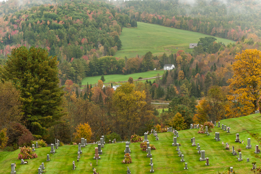 Photograph The Cemetery by Lyn Scott on 500px