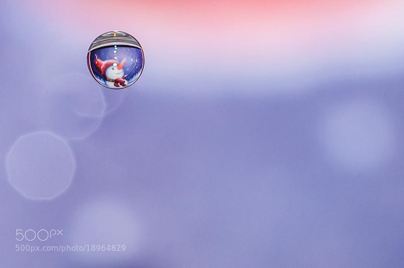 Photograph Goutte d'hiver by Noun 2B on 500px