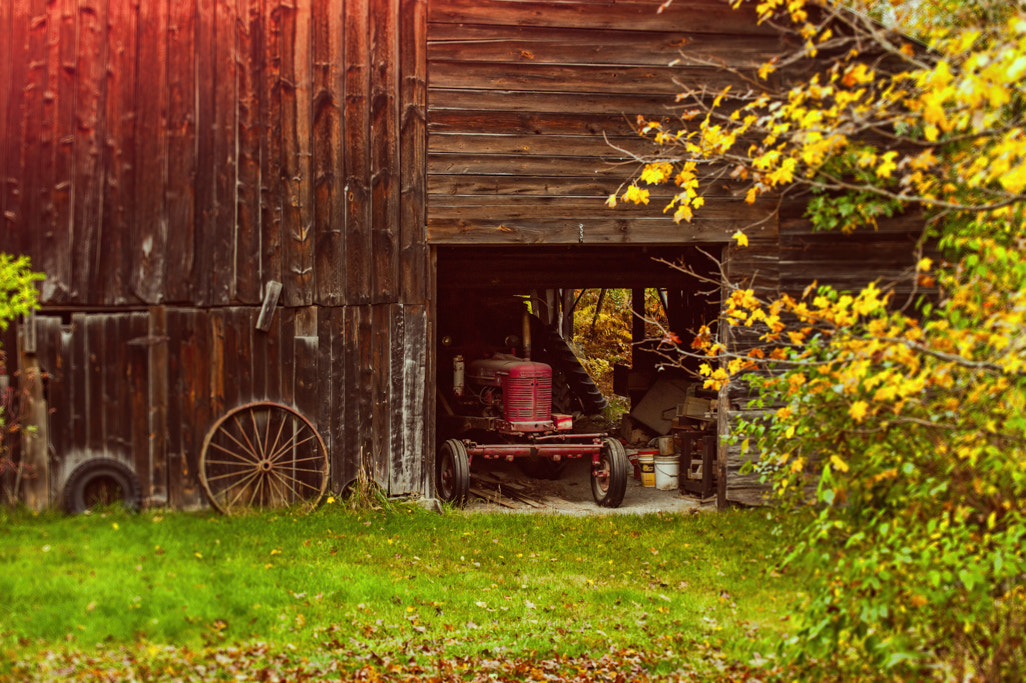 Photograph The Hiding Tractor by Lyn Scott on 500px
