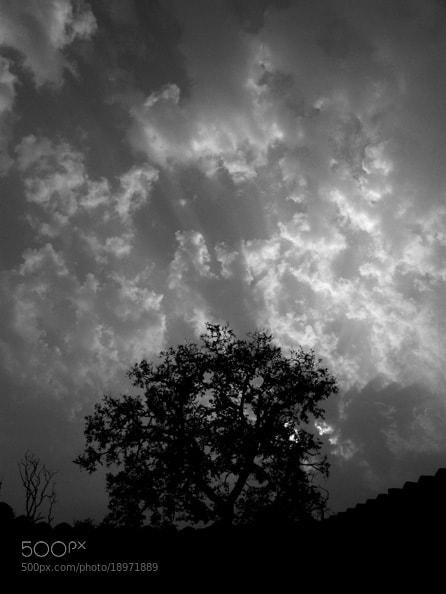 Photograph Untitled by Abhishek Basu on 500px