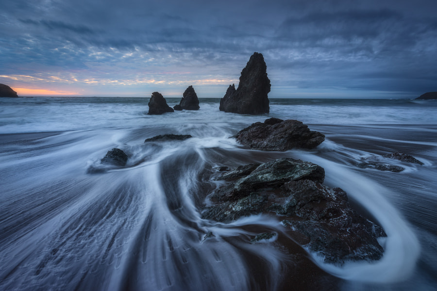 Wild Swirl by Dylan Toh & Marianne Lim on 500px.com