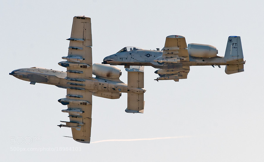 Two Flying Tigers A-10 Warthogs break to land at Moody AFB