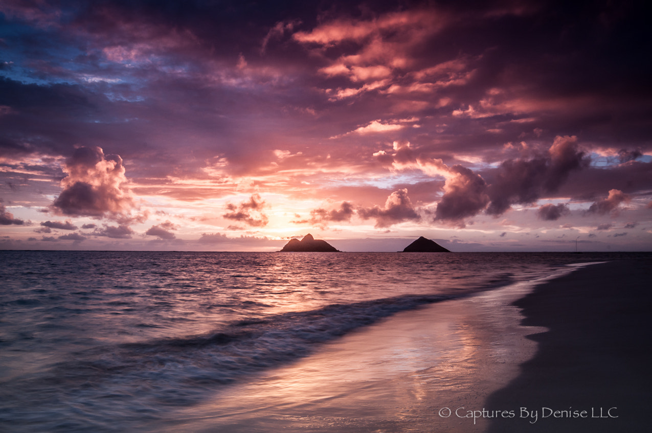 Photograph Fantasy by Denise Santos on 500px