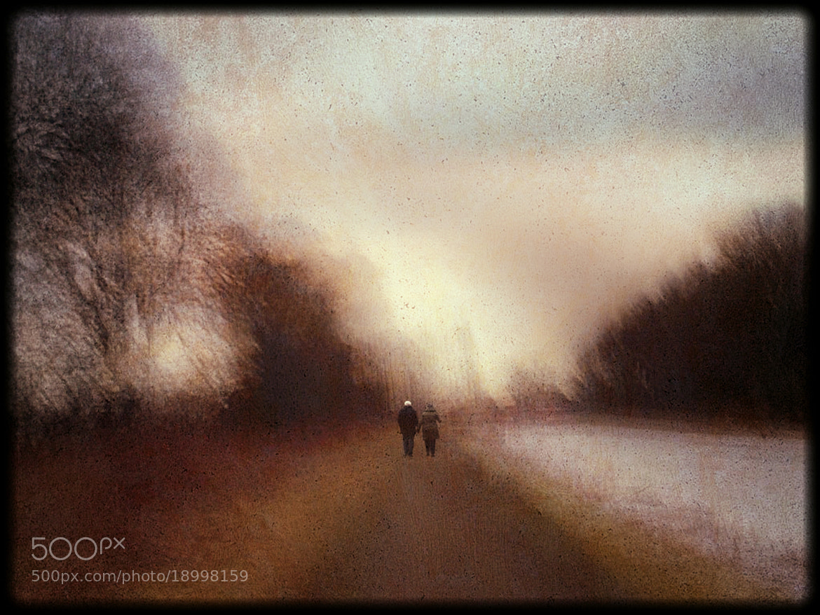 Photograph An autumn walk  (the way young lovers do) by KENNY BARKER on 500px