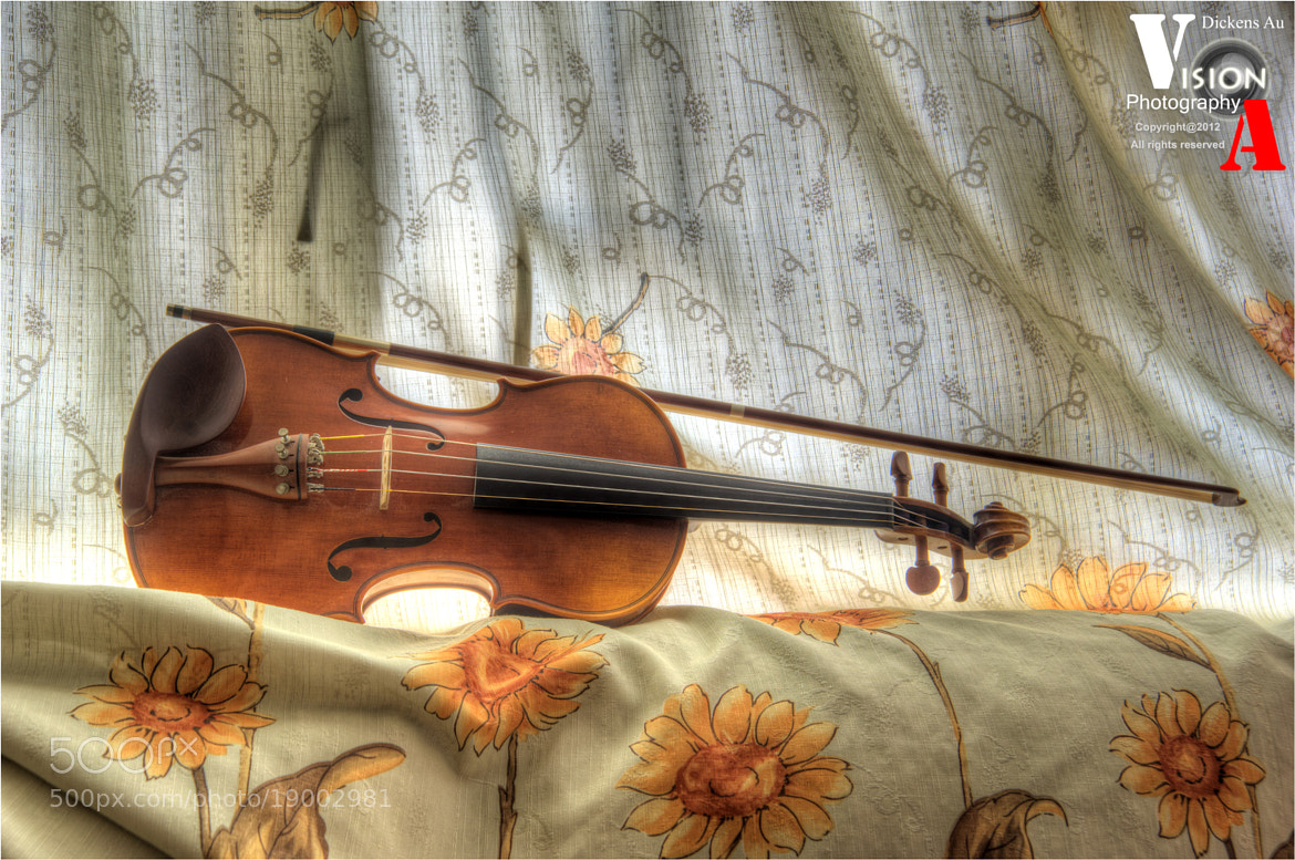 Photograph My violin ~ sora by Dickens Au on 500px