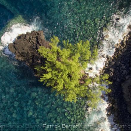My small island 2