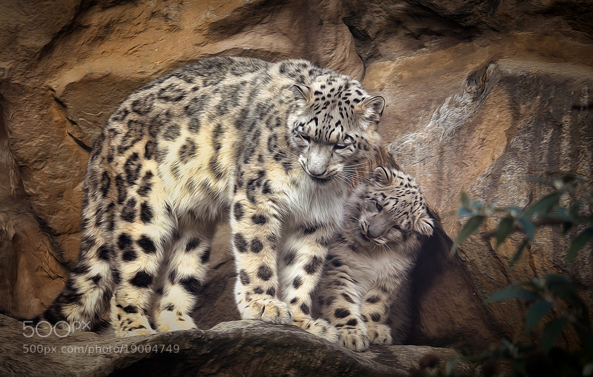 Photograph Mommy - what's that? by Sonja Probst on 500px