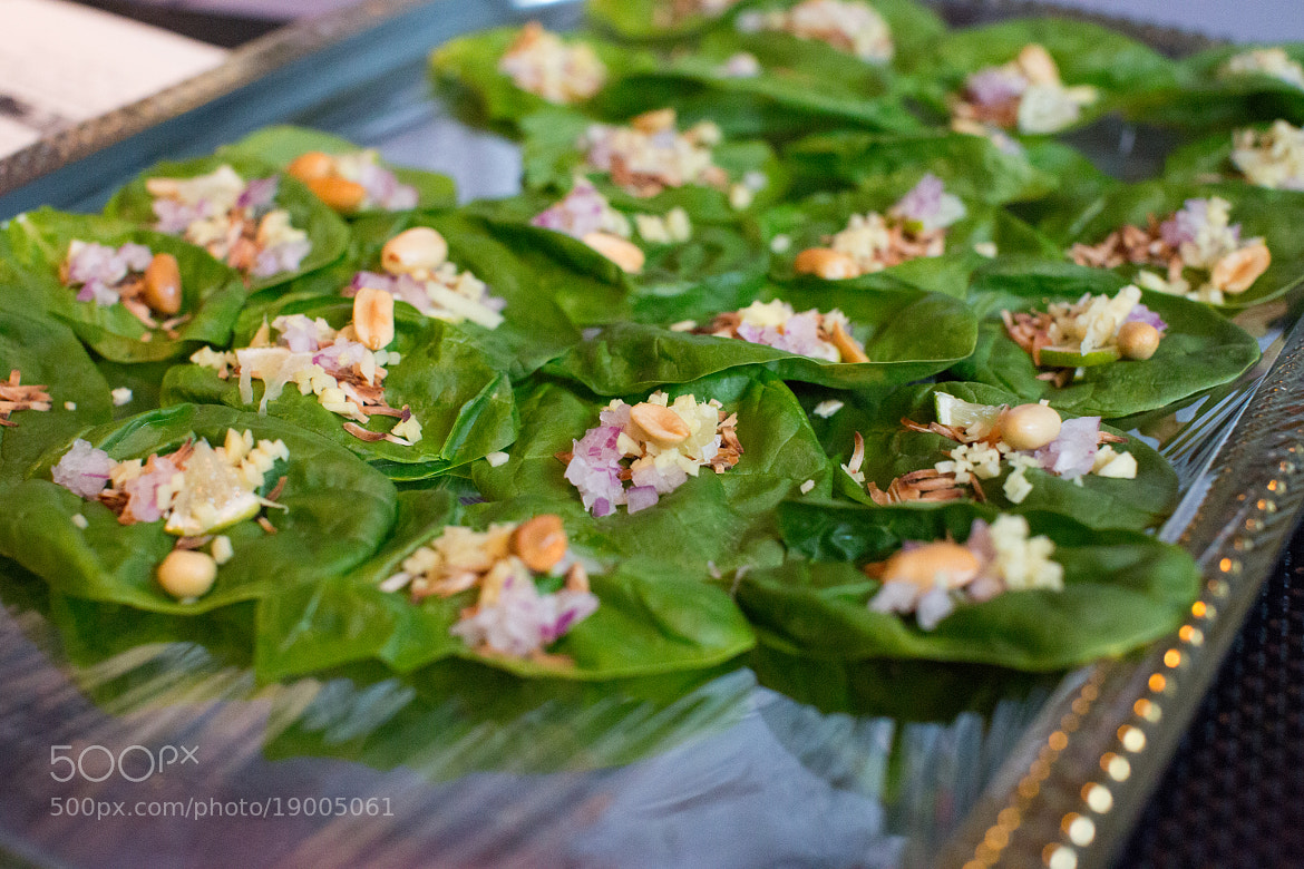 Photograph Thai Lettuce Wraps by Stephanie Hua on 500px