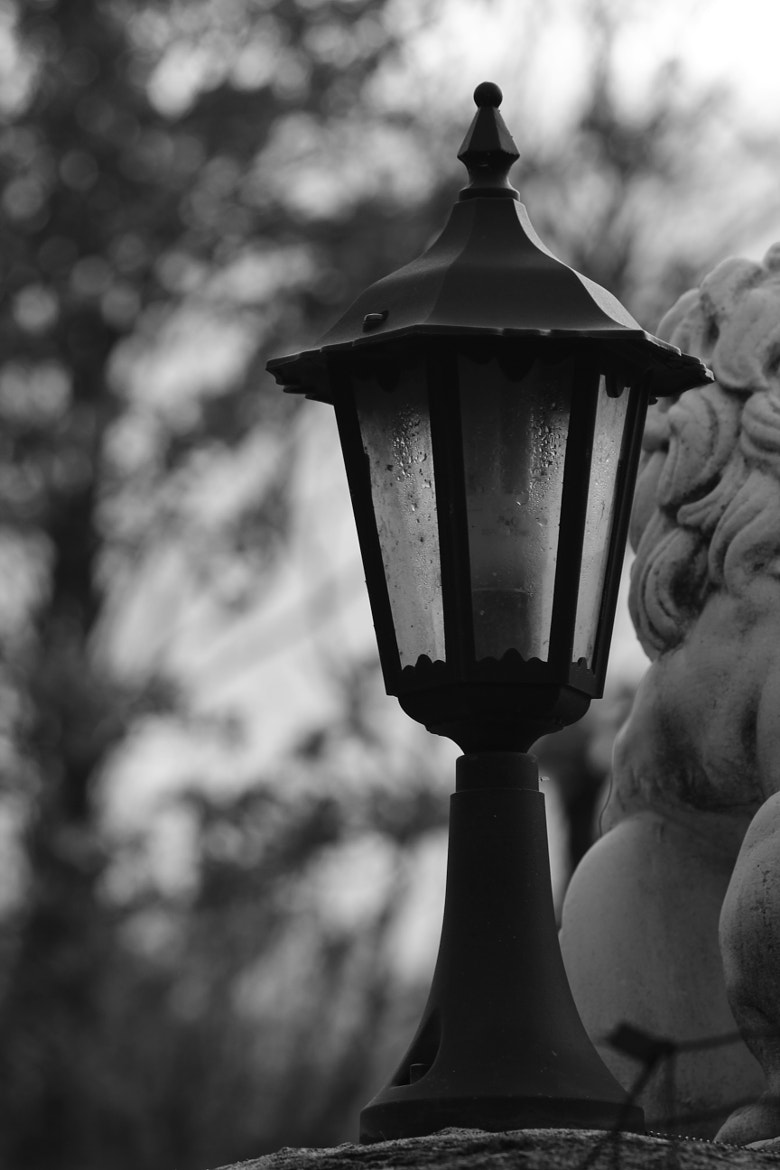 Photograph a lamp by Paola Fiore on 500px