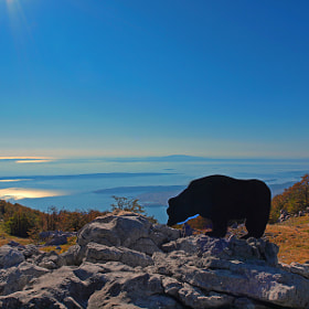 VELEBIT by Mirna Vidić (wind2)) on 500px.com