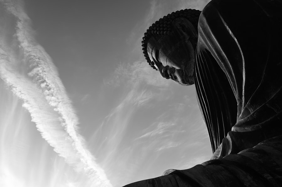 Great Buddha of Kamakura by fotois you on 500px.com