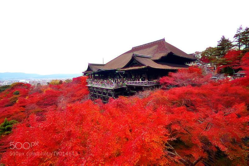 Photograph Kiyomizu-dera by Bu Balus on 500px