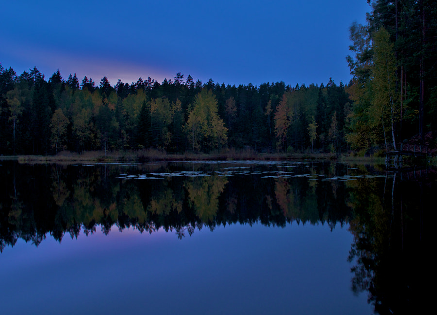 Autumn Evening in Nuuksio National Park