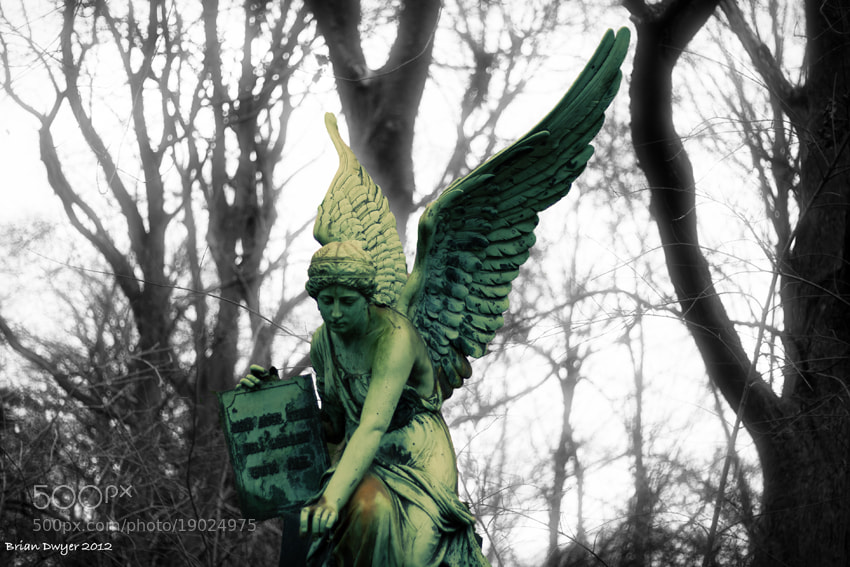 Photograph Ostfriedhof Angel  by Brian Dwyer on 500px