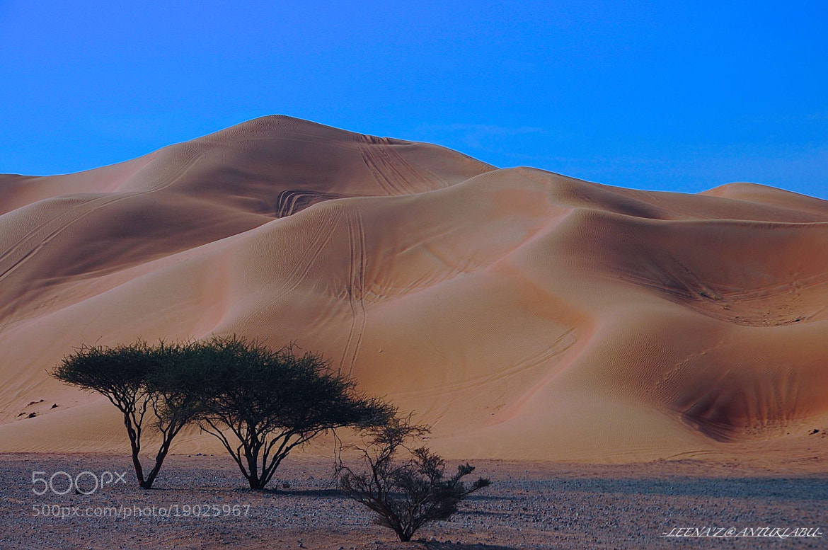 Photograph Sand dunes... by Leena'z Anilzam on 500px