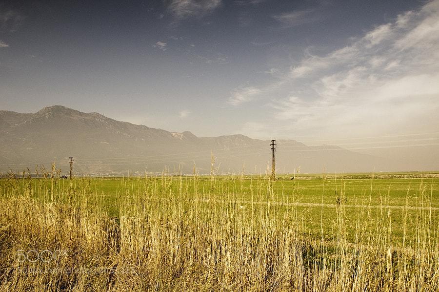 Photograph Harvest  by FOKS Creative House on 500px