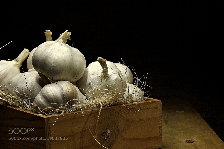 Photograph Garlics by Suehana Suzie on 500px