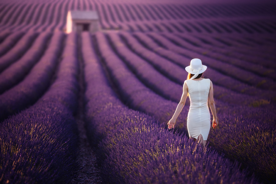 Back to home by Paweł Uchorczak on 500px.com