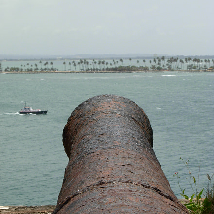 Guarding the inlet for, Nikon COOLPIX L5