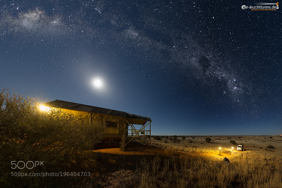 Starry sky and moon light at the edge of the Kalahari