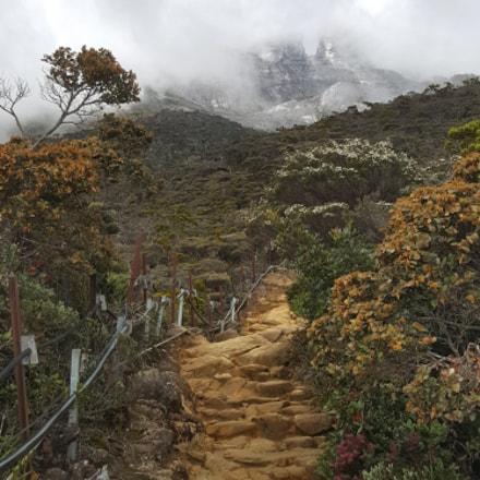 The Climb - Day 1