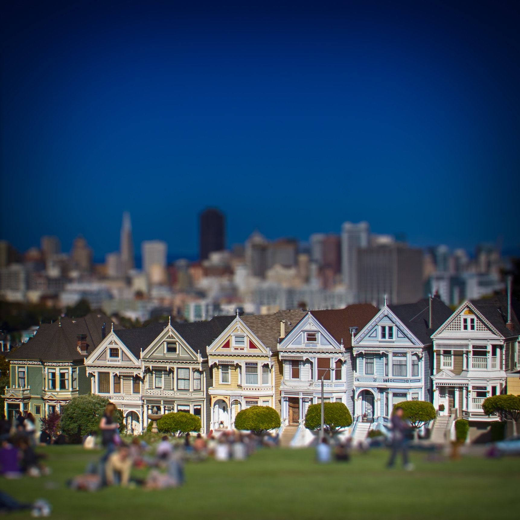 Photograph Painted Ladies by Laurent Meister on 500px