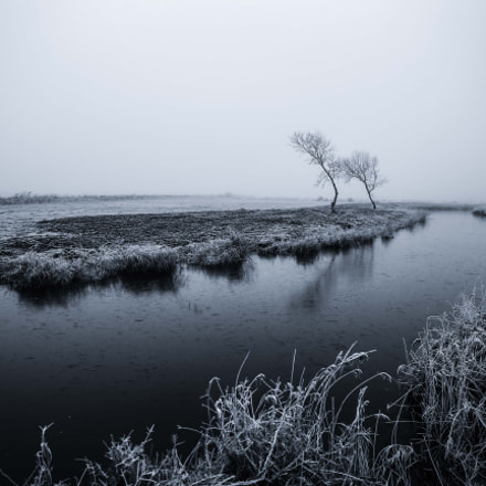 Winter time..., Canon EOS-1D X