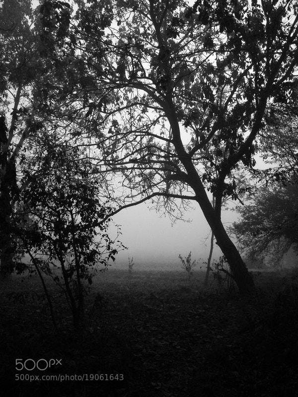 Photograph The Twilight Zone by Bojan Marinkoski on 500px