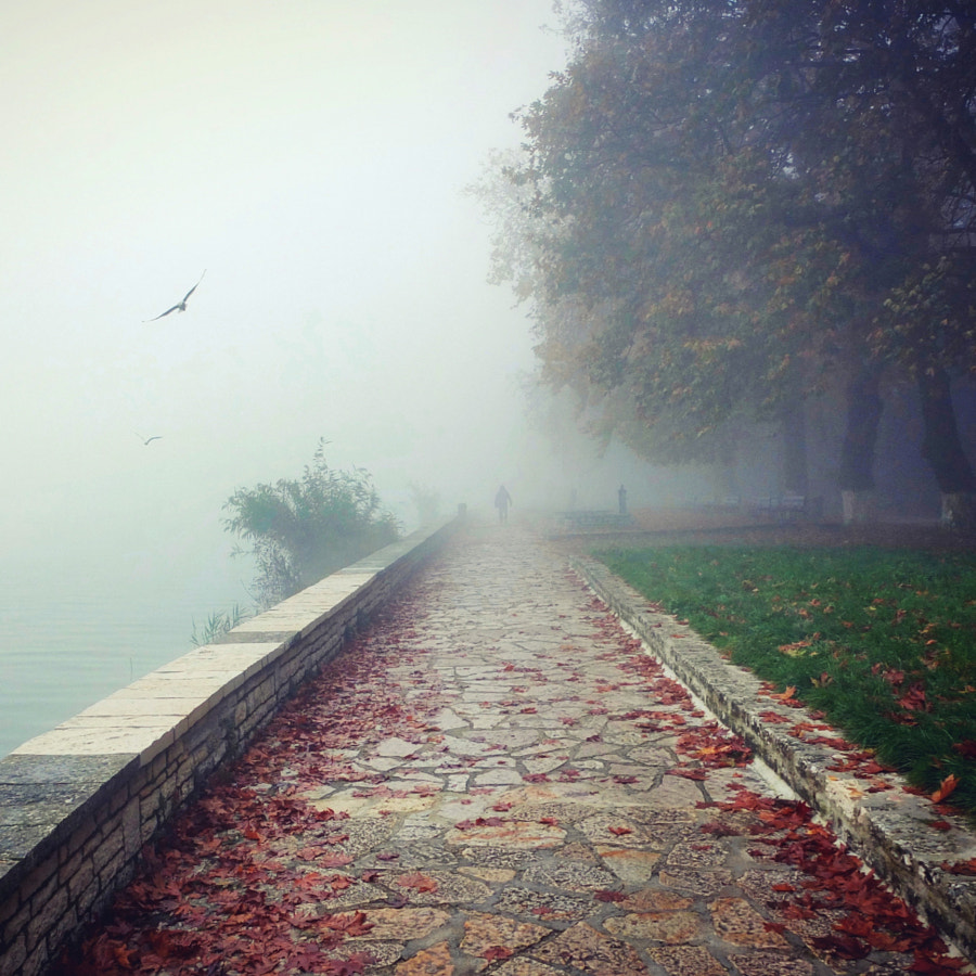 Disappear in the mist by aris ziovas on 500px.com
