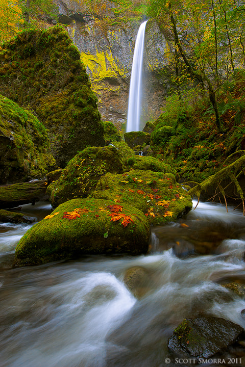 Photograph Fall at Elowah by Scott  Smorra on 500px